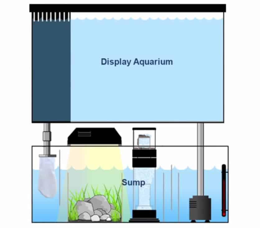 aquarium-sump-filter