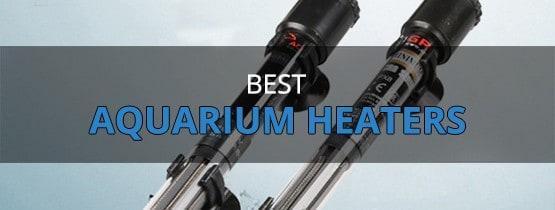 Best Aquarium Heaters 2017 – Buyer's Guide