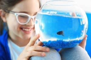 best-starter-aquariums-for-children