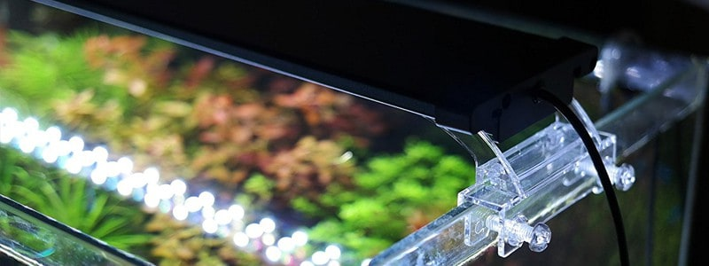 best-led-aquarium-lighting