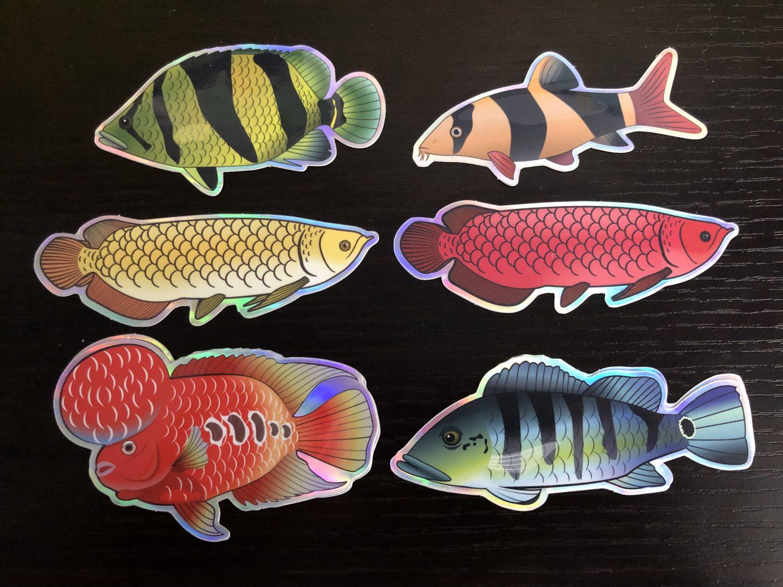 aquarium-gift-idea